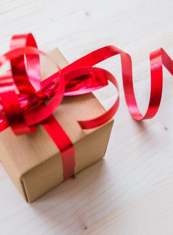 Top 10 Healthy Holiday Gift Guide for 2017